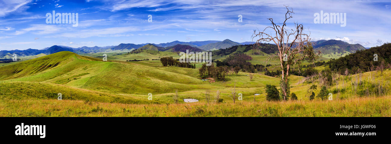 Wide panorama of australian rural agricultural land for growth of cattle with farm, fences, water pits and hill Stock Photo