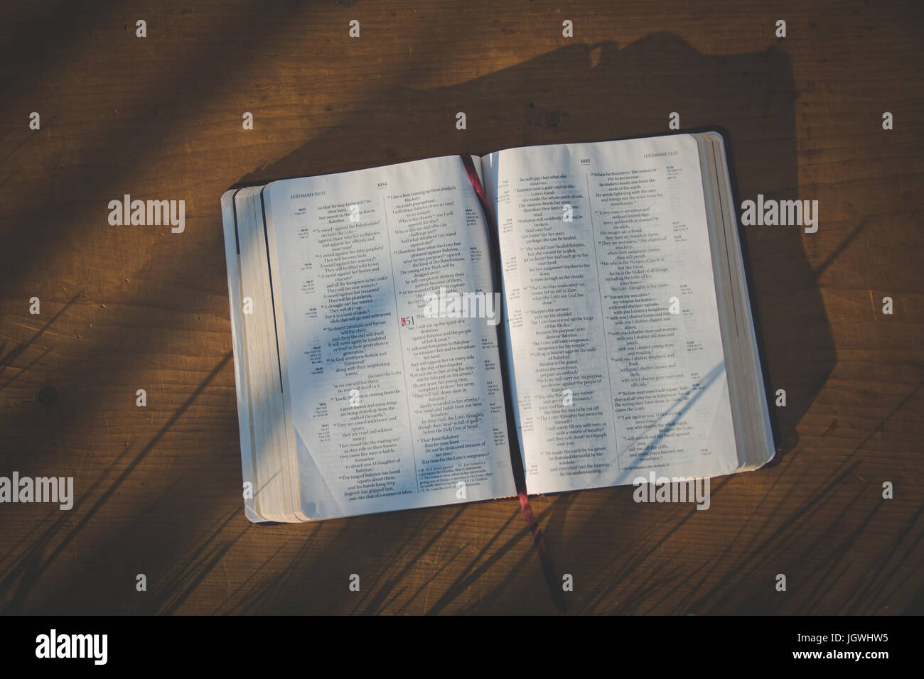 A bible laying open in the grass - Stock Image