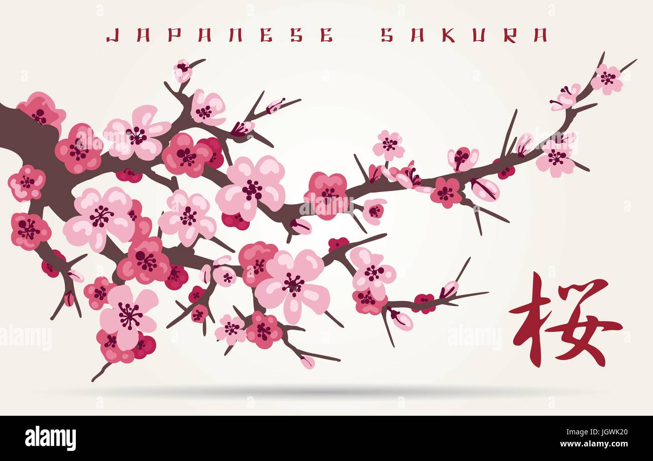 Japan cherry blossom branching tree vector illustration japanese japan cherry blossom branching tree vector illustration japanese invitation card with asian blossoming plum branch stopboris Images
