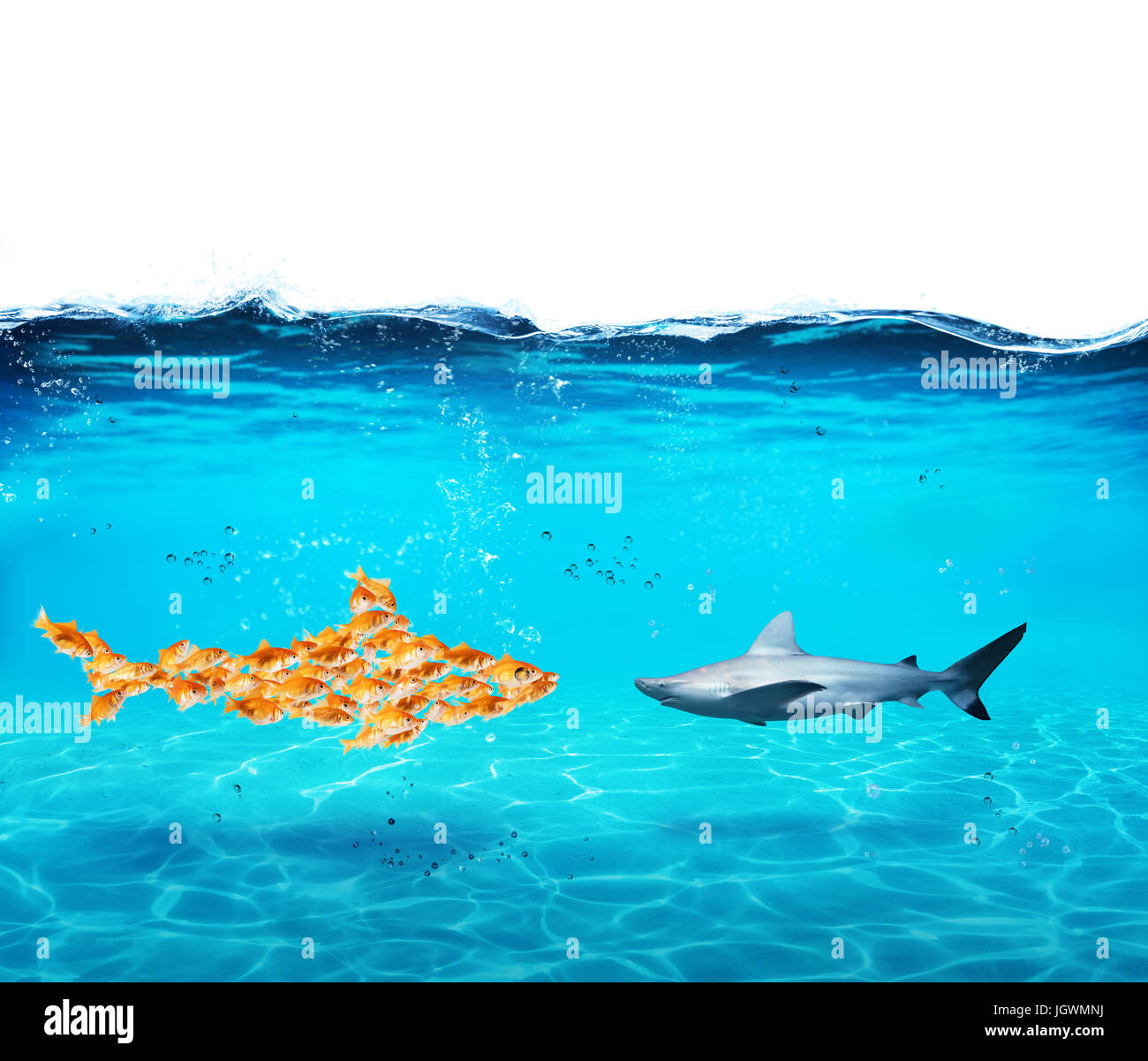 Big shark made of goldfishes. Concept of unity is strenght,teamwork and partnership - Stock Image