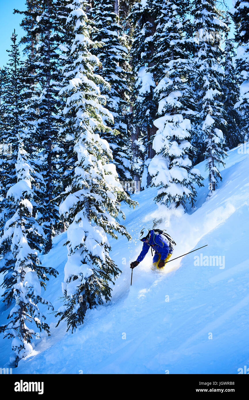 Man skiing down steep snow covered forest, Aspen, Colorado, USA - Stock Image