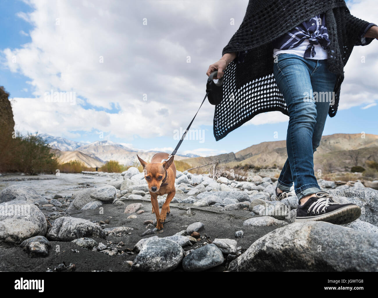 Neck down view of woman walking dog on rocky riverbed - Stock Image