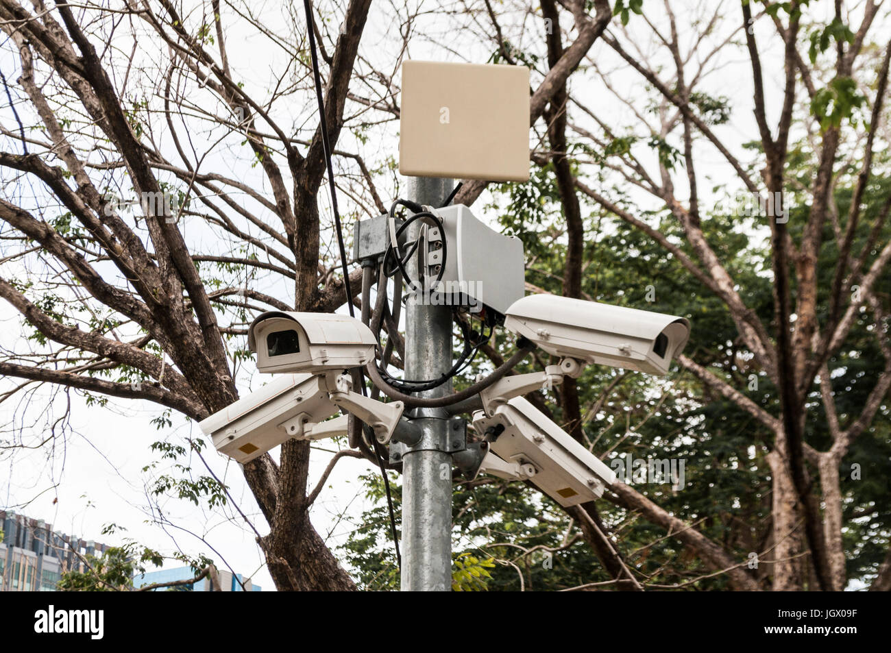 Four CCTV surveillance security cameras point in different directions in a park for public safety. - Stock Image