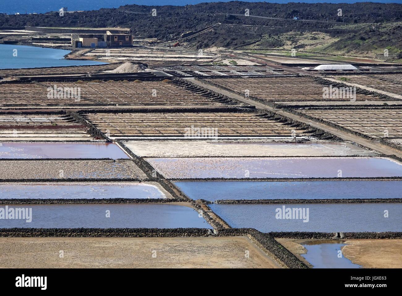Salinas de Janubio, Meersalzgewinnung an der Suedwestkueste von Lanzarote, Kanarische Inseln, Europa | Salinas de - Stock Image
