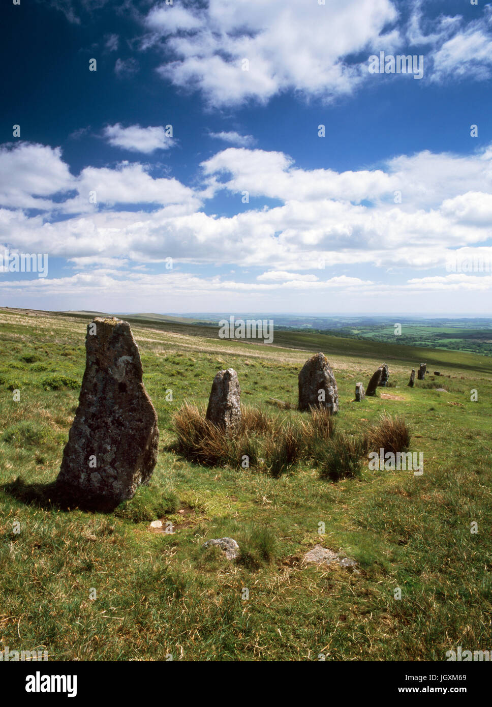 Looking S, towards the Erme valley & the sea, at the lower quarter of Stalldon stone row on Dartmoor. The tall, - Stock Image