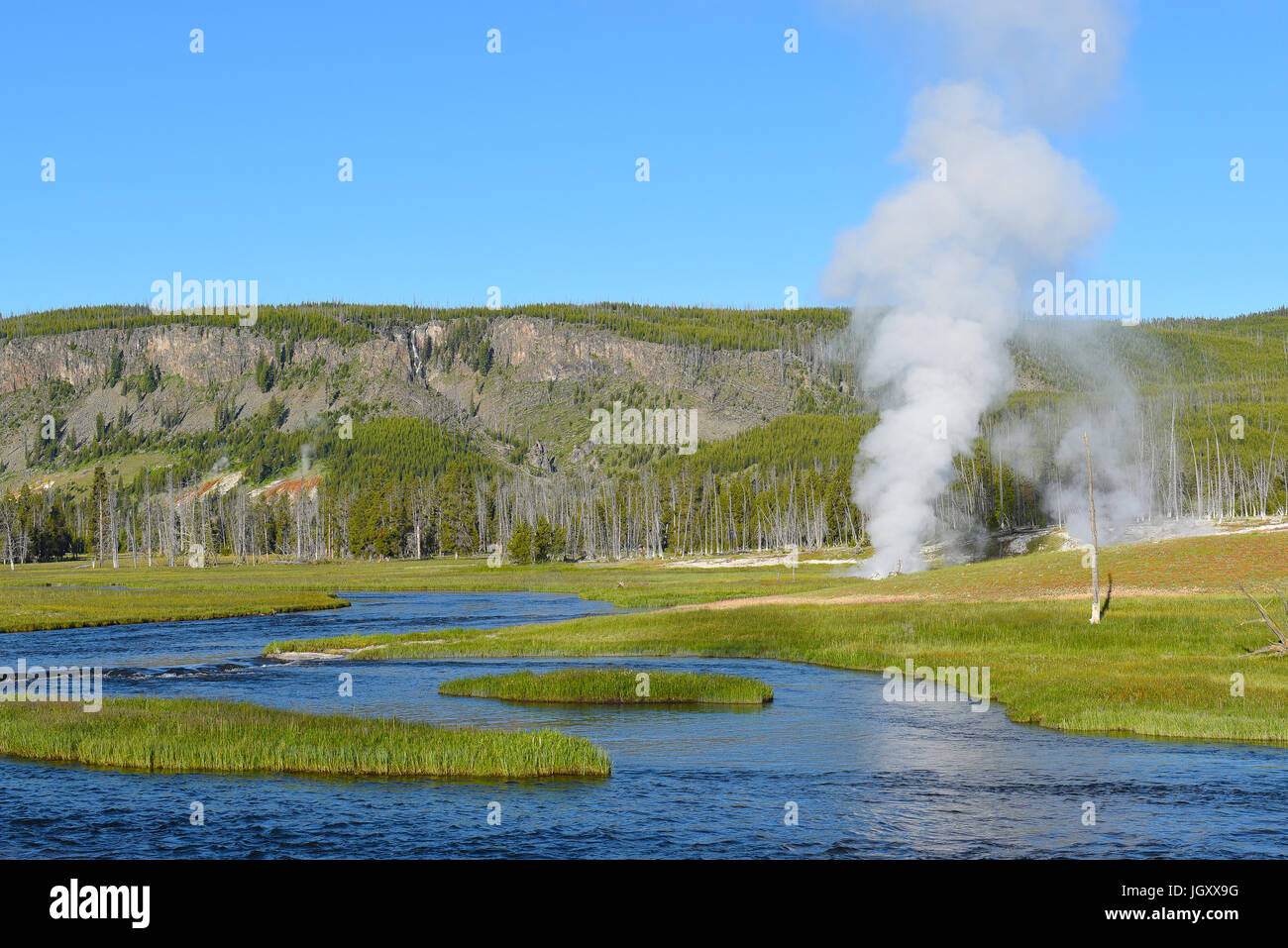 Thermal activity in Yellowstone National Park, Wyoming. Steam rises from a vent with mountains in the background - Stock Image
