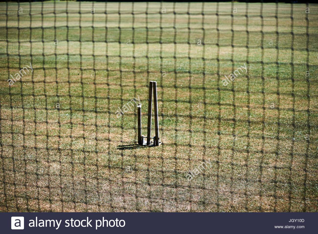 Cricket sidescreen - Stock Image
