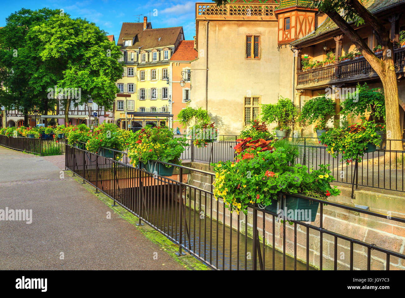 Stunning Colorful Traditional French Houses And Decorated Street With Beautiful Flowers In Best Touristic World Town Colmar France Europe