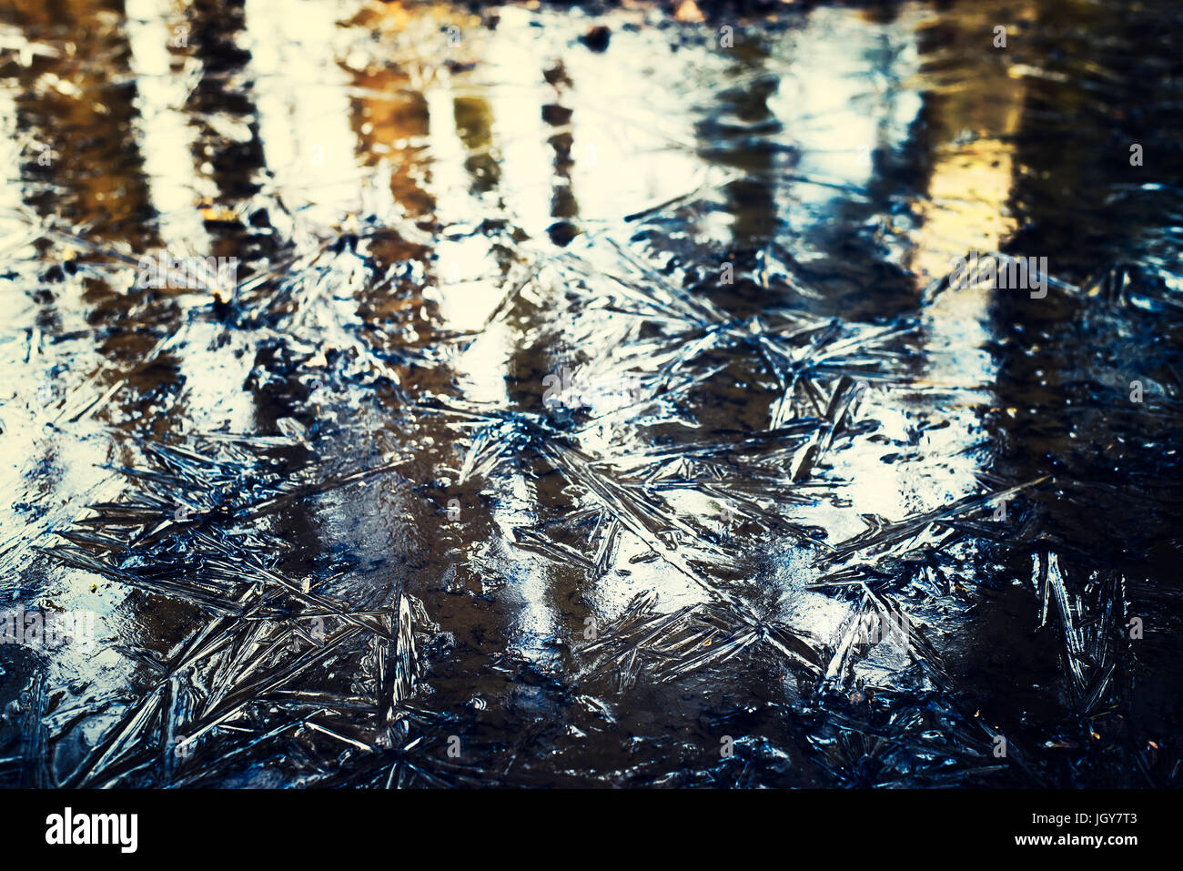 Ice pattern with reflection of trees by sunset - Stock Image