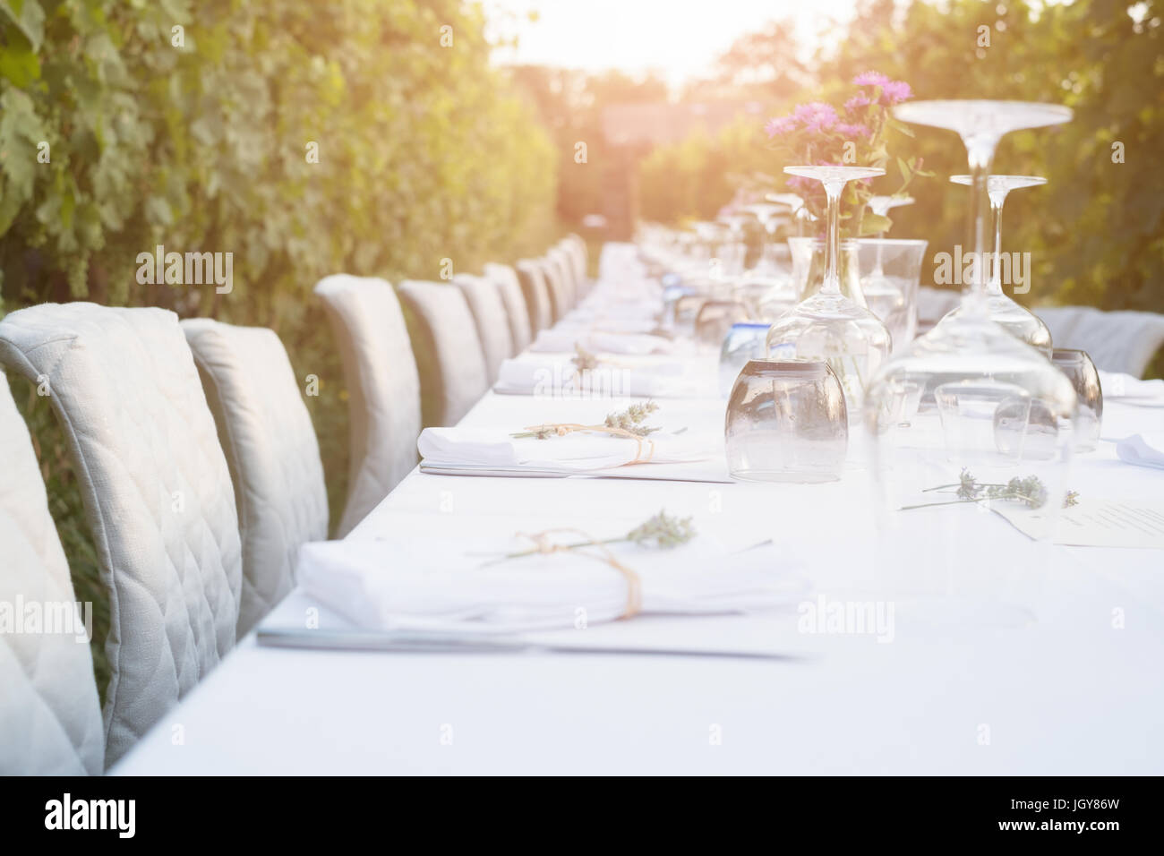 Party table set for social event in the countryside - Stock Image