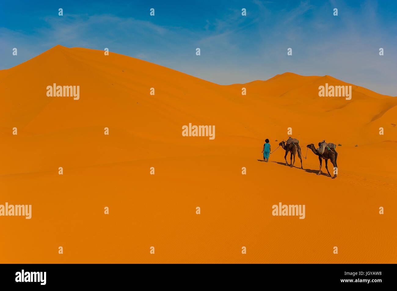 Camel caravan in Erg Chebbi Desert, Sahara Desert near Merzouga, Morocco - Stock Image