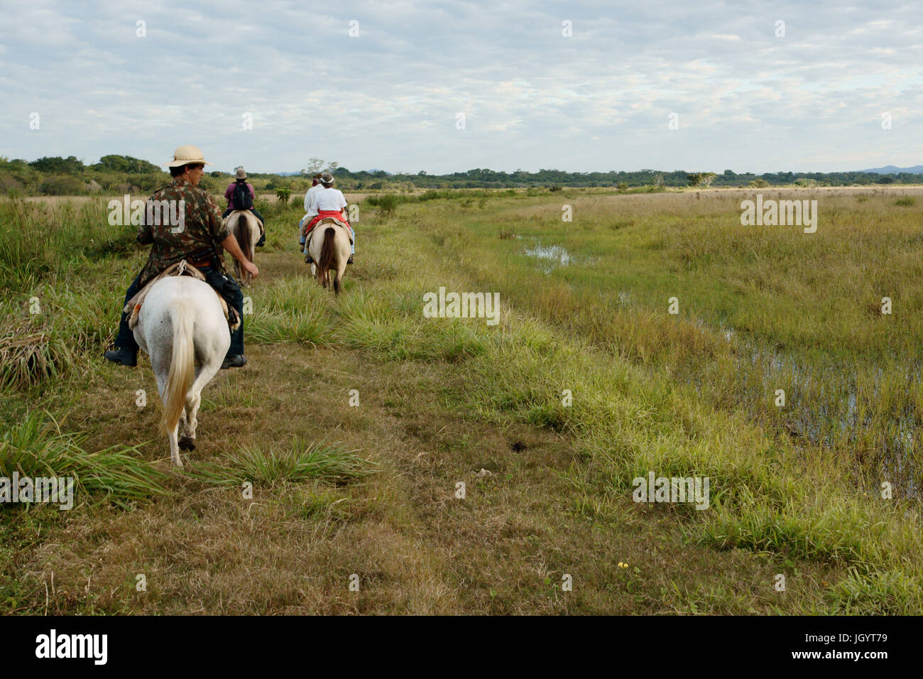 People Riding, Pantanal, Mato Grosso do Sul, Brazil - Stock Image