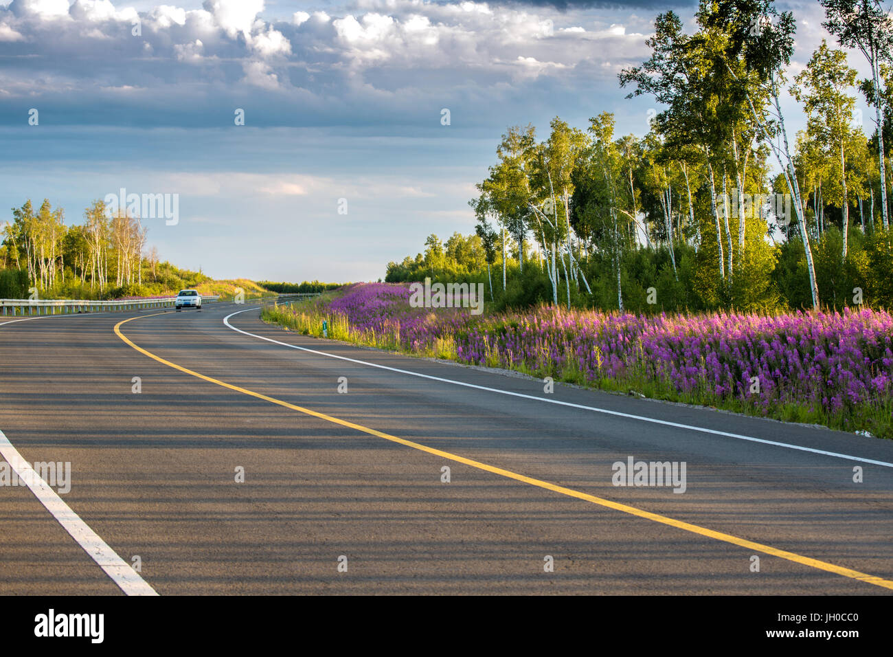 Empty road on pastureland,Inner Mongolia - Stock Image