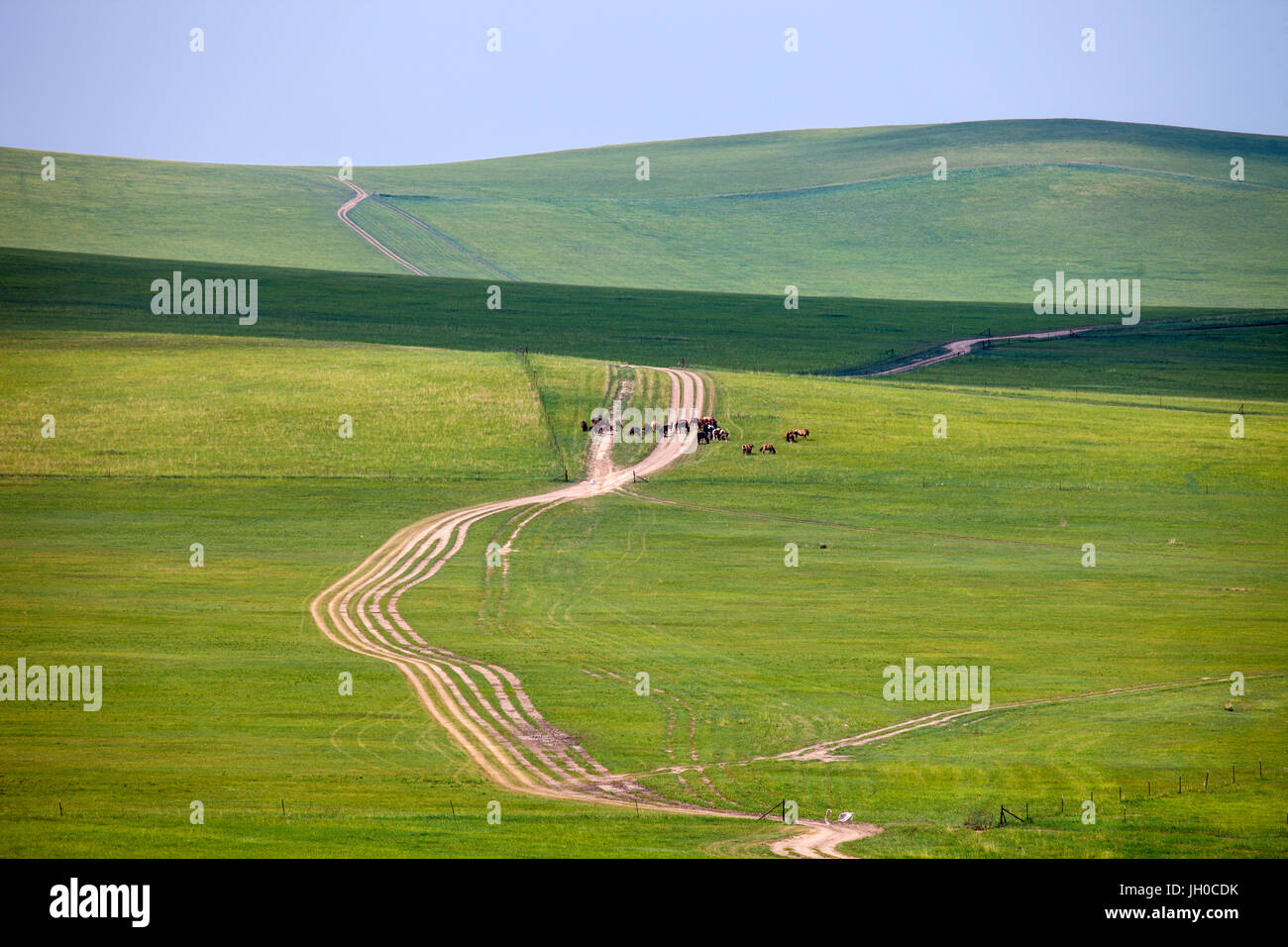 road on pastureland,Inner Mongolia - Stock Image