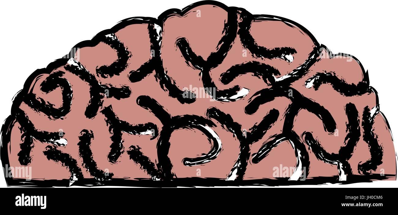 human brain idea creativity thinking memory image - Stock Image