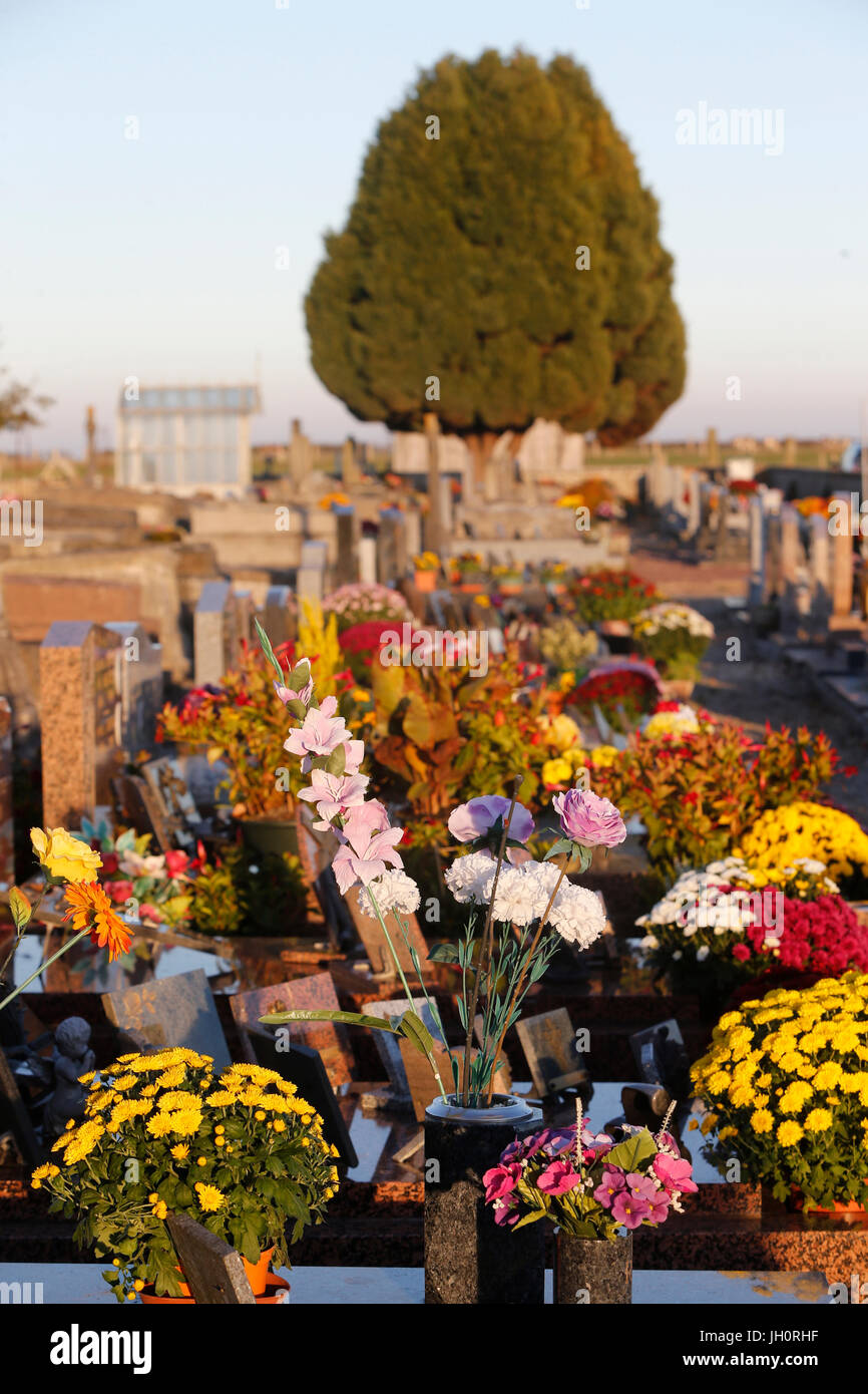 Graveyard with flowers. France. - Stock Image