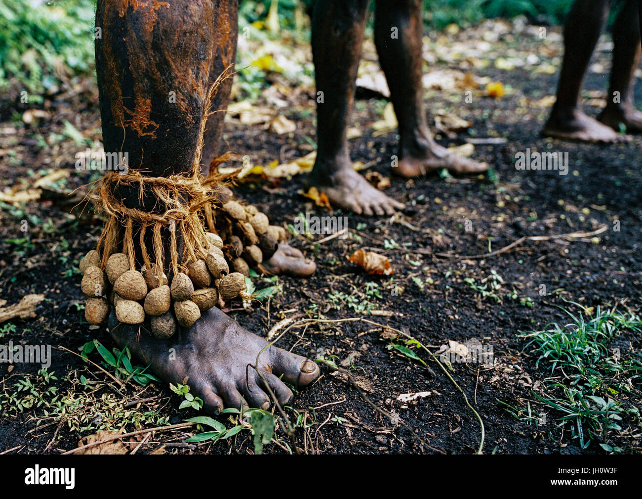 Tribesmen feet with dried seeds to make noise during a ceremony in the jungle, Malampa Province, Malekula Island, - Stock Image