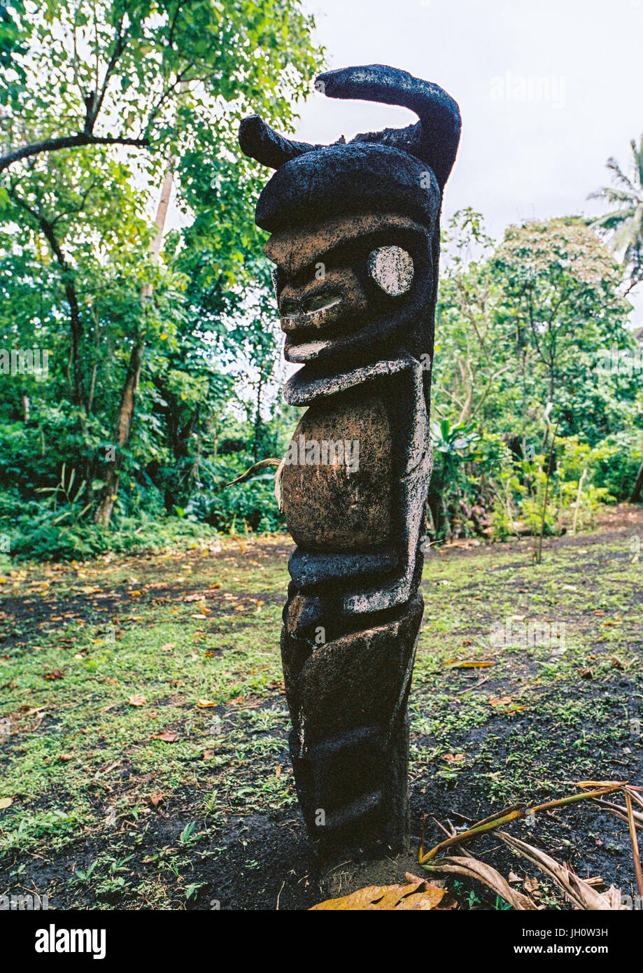 Grade statues in fern trees in the forest, Malampa Province, Malekula Island, Vanuatu - Stock Image