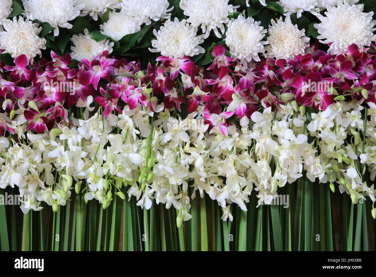 Floral composition. Jasmine and carnation. Wat Ong Teu Mahawihan. Temple of the Heavy Buddha. Vientiane. Laos. - Stock Image