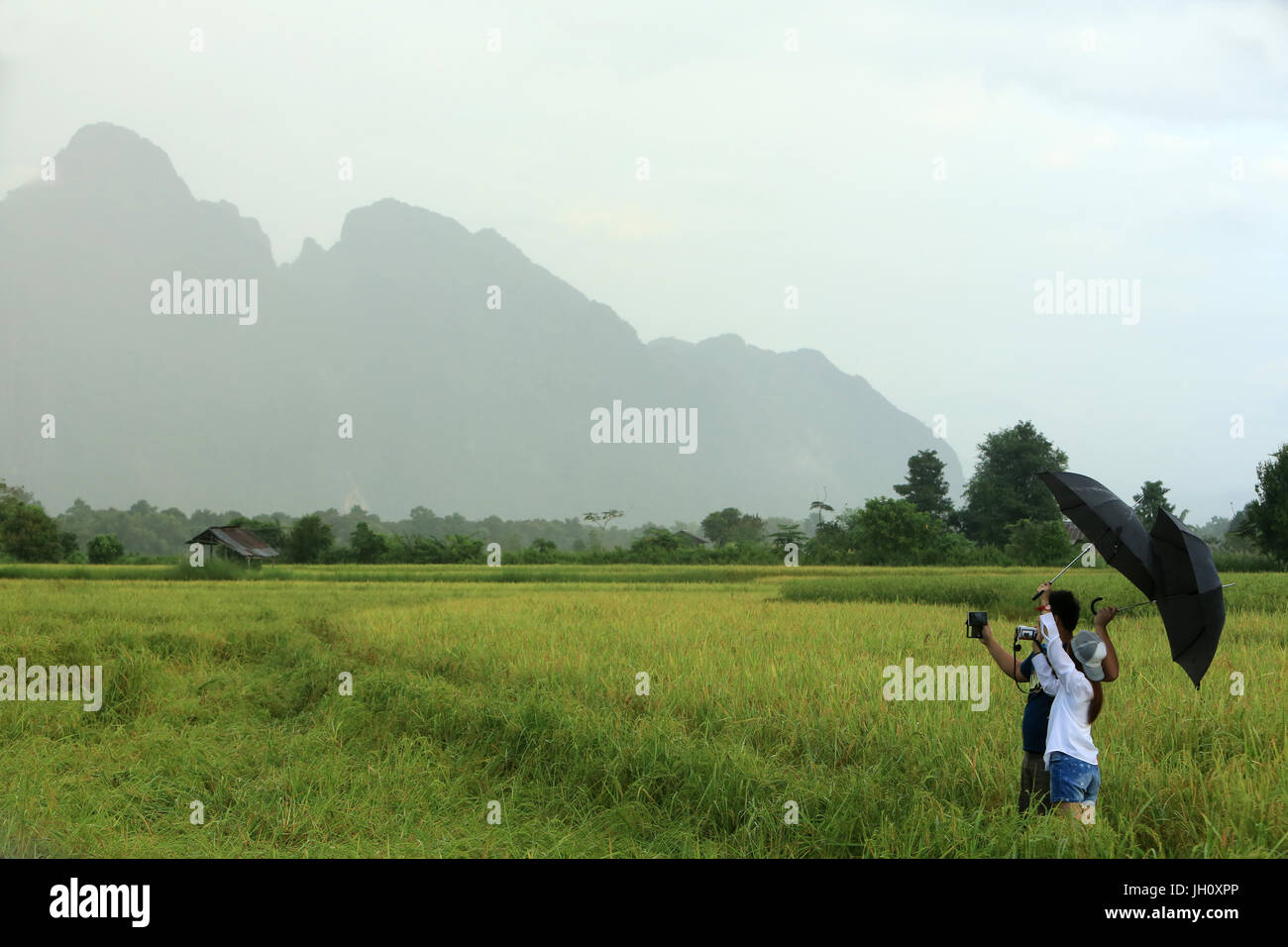 Tourists taken pictures in rice fields. Mountainsides in rural Laos near the town of Vang Vieng. Laos. - Stock Image