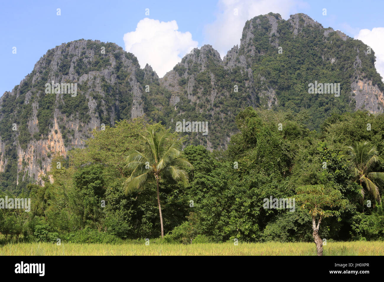 Mountainsides in rural Laos near the town of Vang Vieng. Laos. - Stock Image