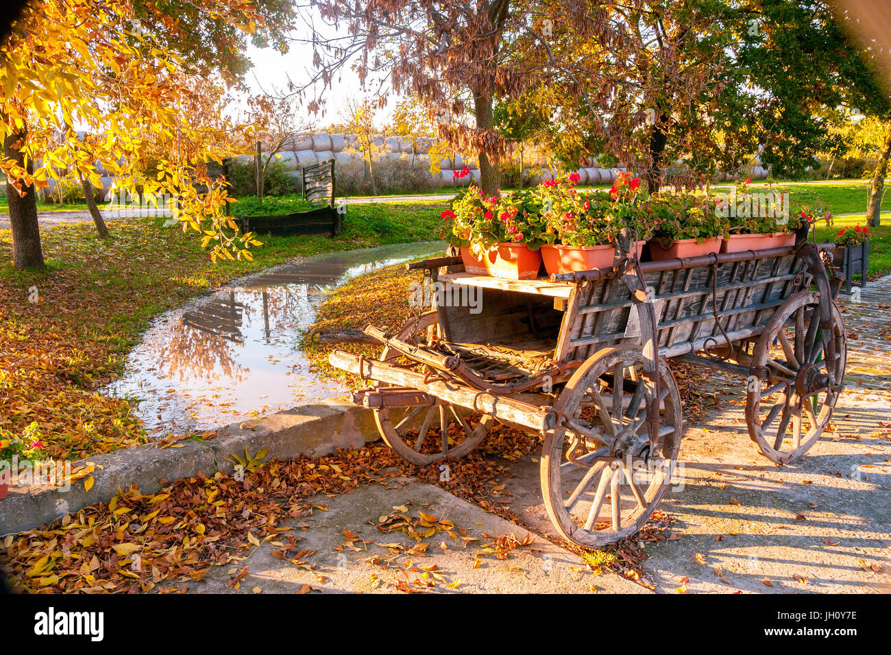 Autumn Colour With A Old Display Farm Wagon Filled With Flowers By Stock Photo Alamy