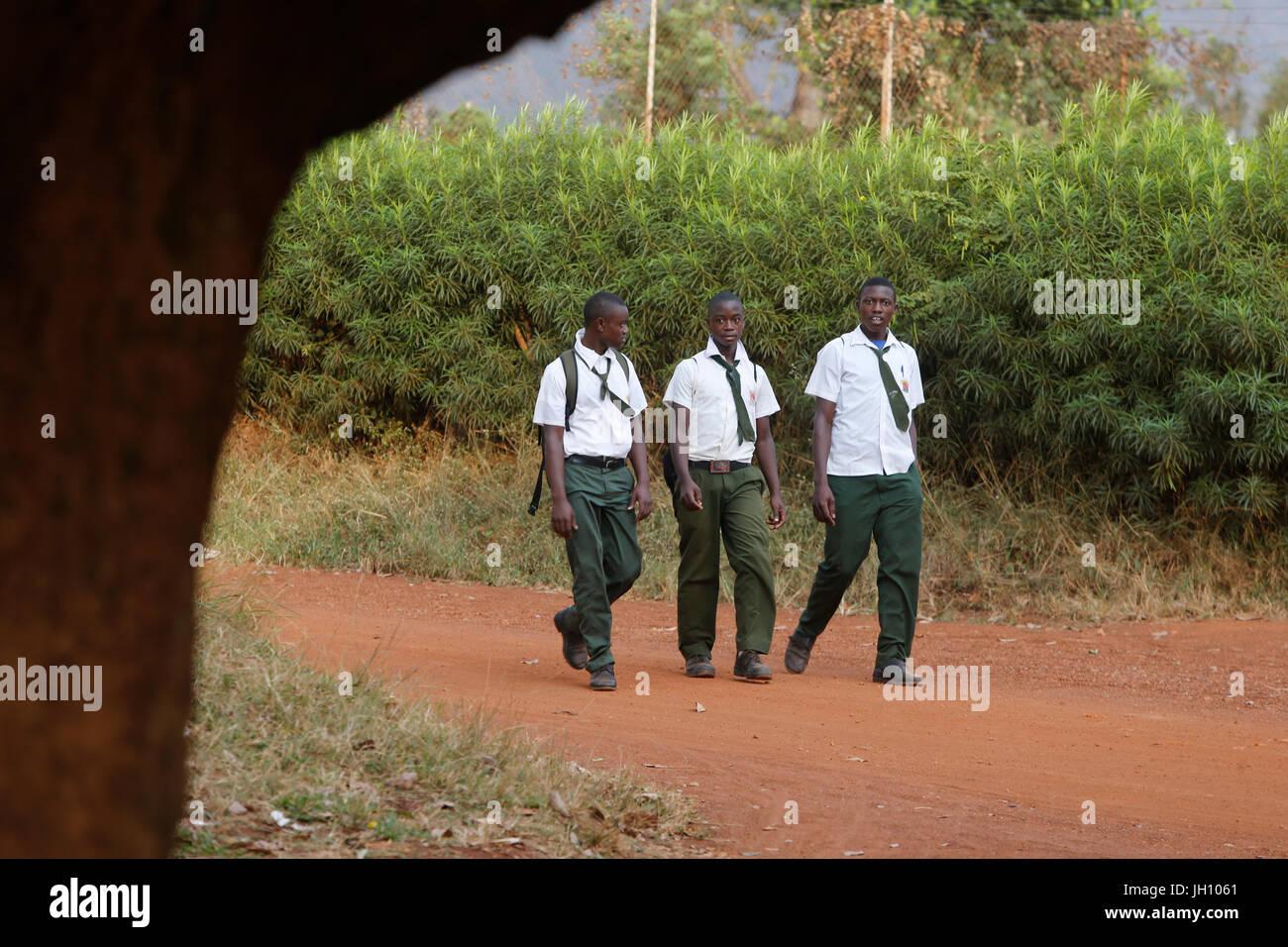 Ugandan schoolboys. Uganda. - Stock Image