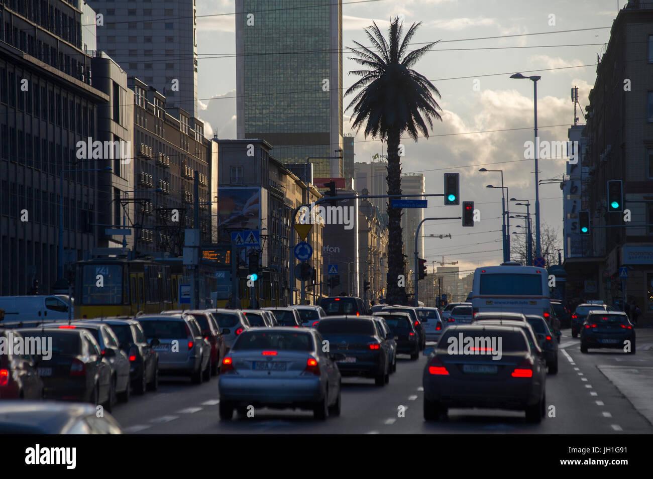 An artificial date palm called Greetings from Jerusalem Avenues (Pozdrowienia z Alej Jerozolimskich) on Charles - Stock Image
