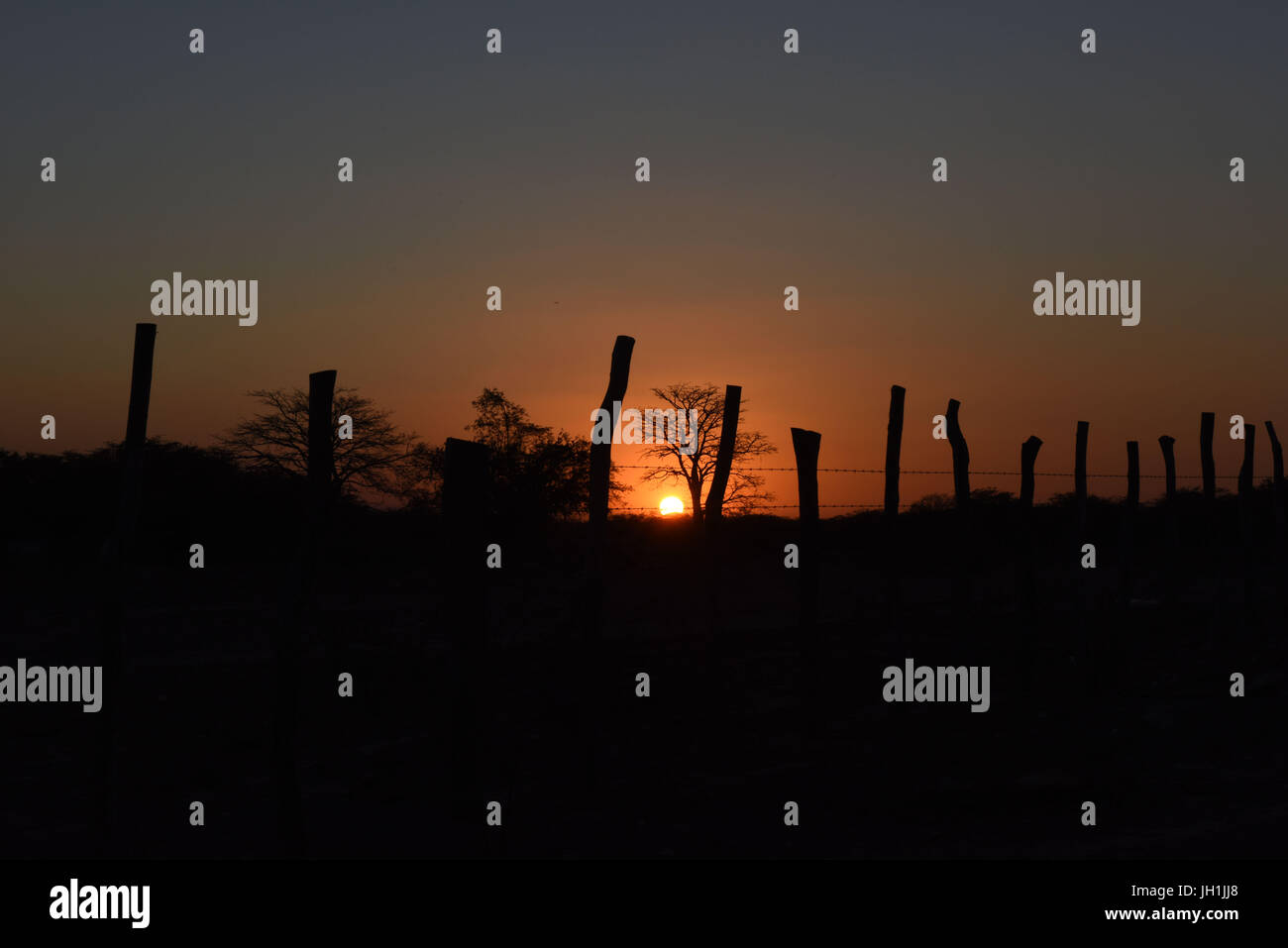 Sunset, 2017, Caatinga, Boa Vista, Paraíba, Brazil Stock Photo