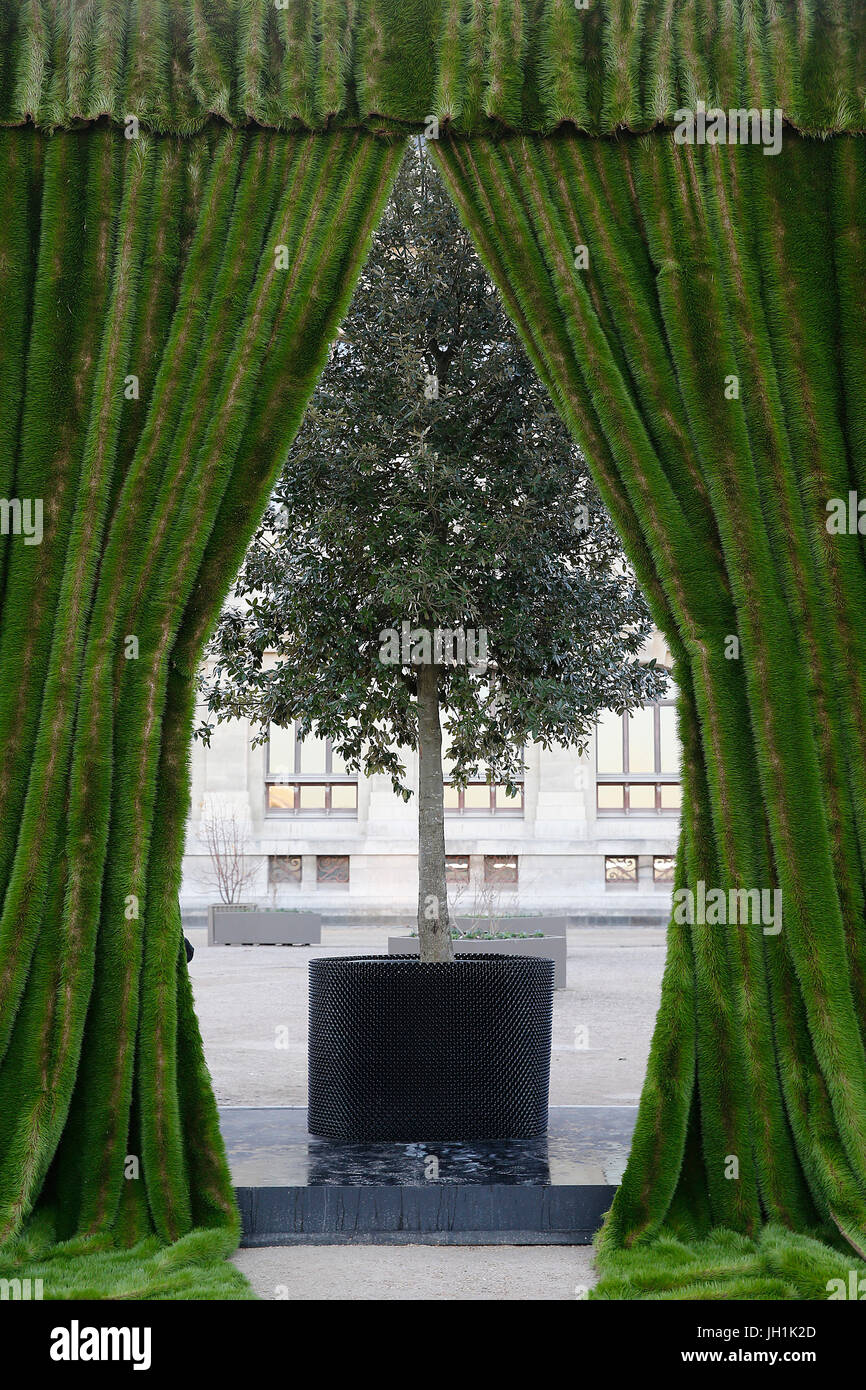 Curtain and tree. France. - Stock Image