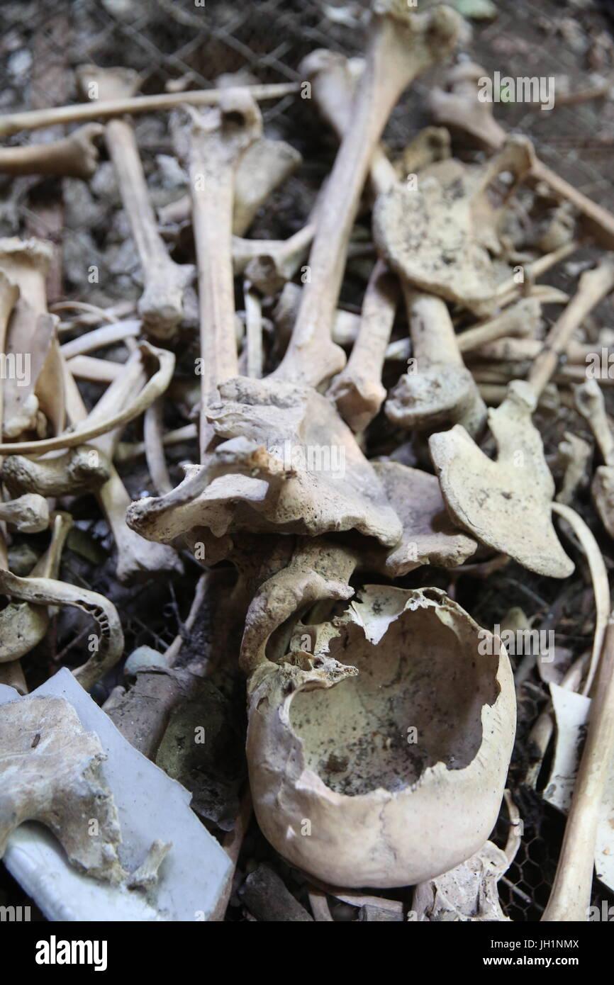 Khmer Rouge victim memorial at Wat Sampheou, Battambang. Cambodia. - Stock Image