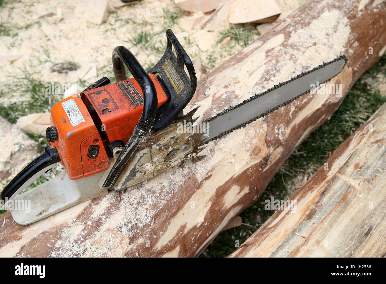 Chainsaw with cut log. France. - Stock Image