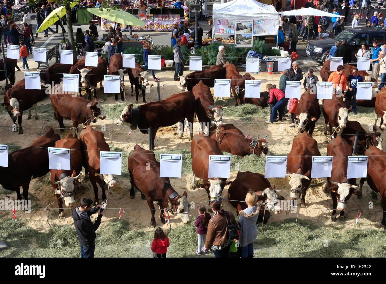 The agriculture fair (Comice Agricole) of Saint-Gervais-les-Bains. France. - Stock Image