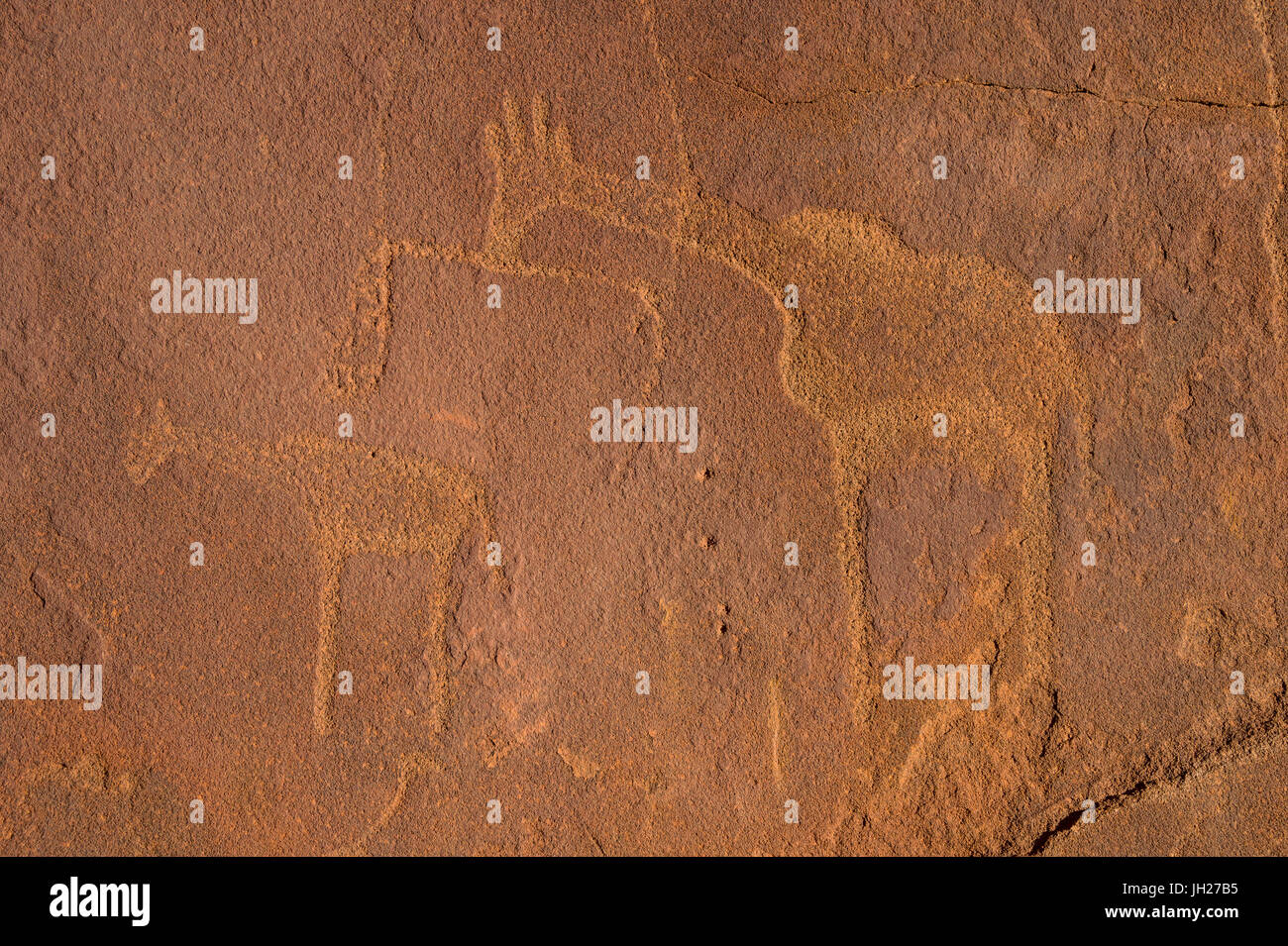 Ancient rock engravings, Twyfelfontein, UNESCO World Heritage Site, Namibia, Africa - Stock Image