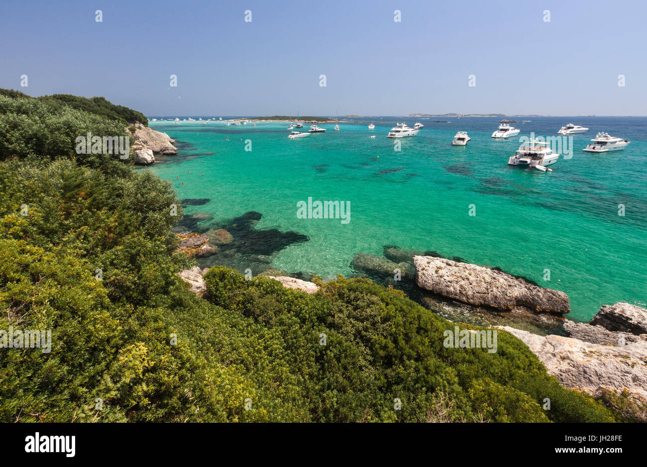 Green vegetation of the inland frames the speed boats moored in the crystal sea, Sperone, Bonifacio, South Corsica, - Stock Image