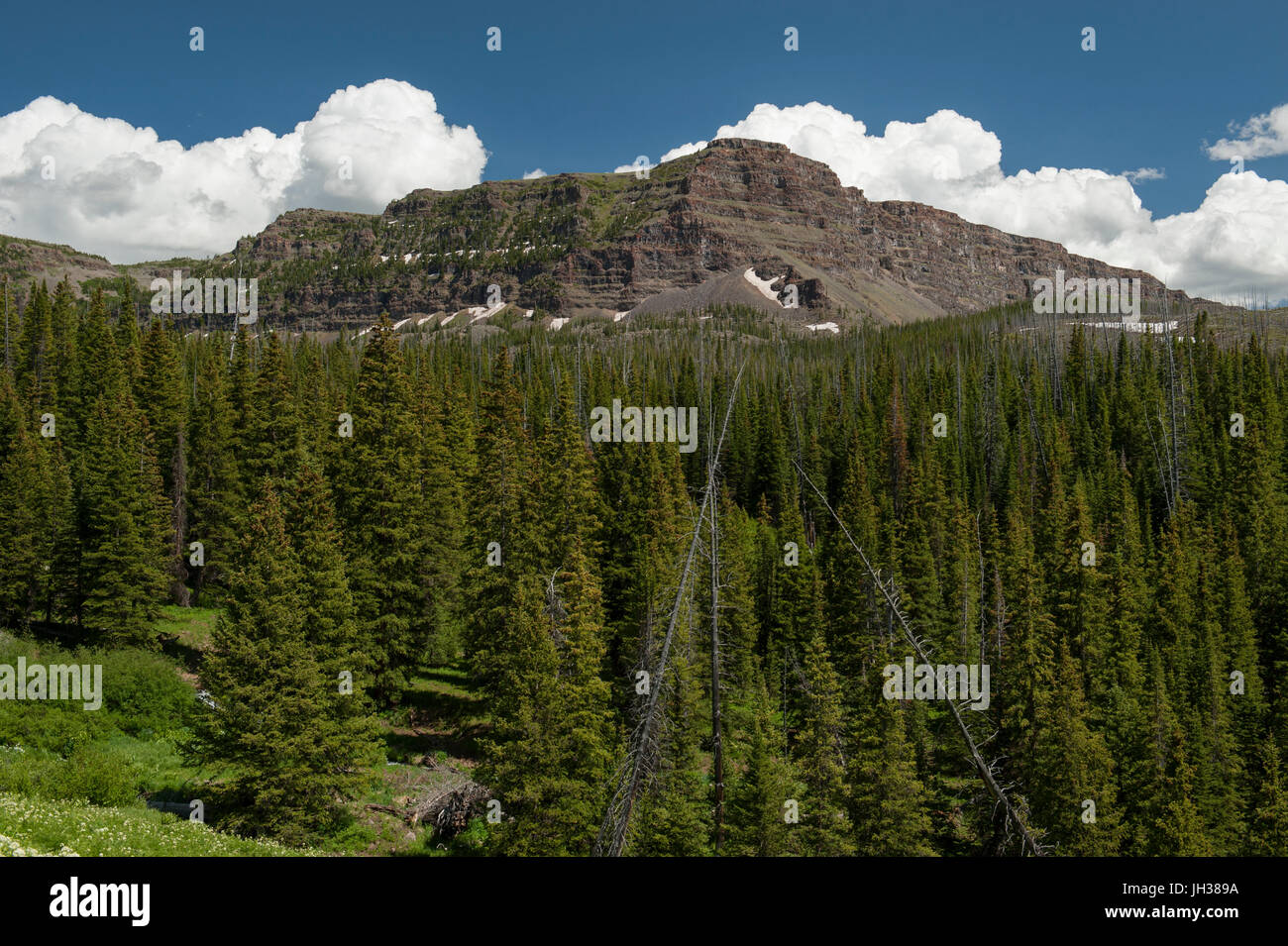 A portion of the Chinese Wall above the Skinny Fish Basin in northwest Colorado's Flat Tops Wilderness. - Stock Image