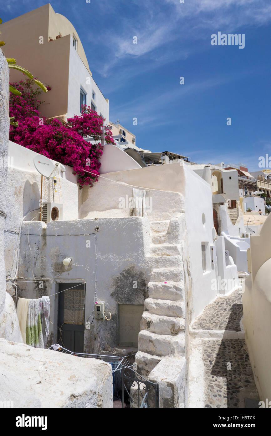Malerische Gasse am Kraterrand der Caldera, Oia, Santorin, Kykladen, Aegaeis, Griechenland, Mittelmeer, Europa   - Stock Image