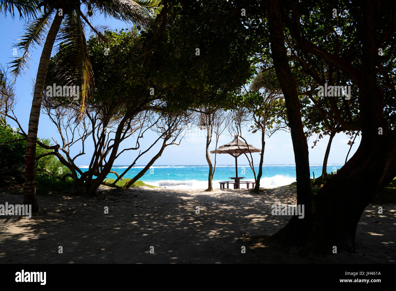 Approach to Macaroni Beach, viewed through trees, showing turquoise blue water and tiki style beach umbrella Stock Photo