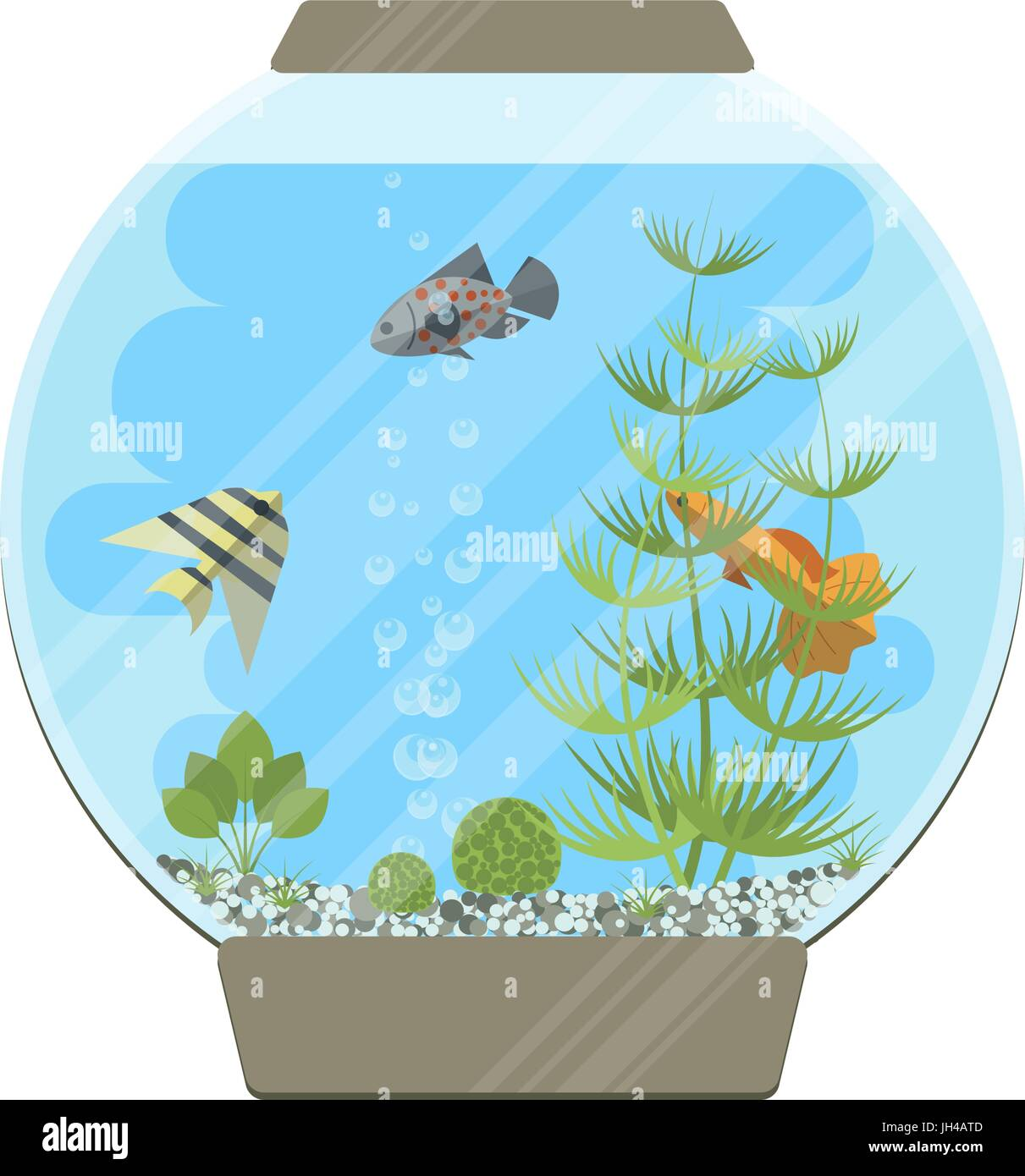 Cartoon vector home aquarium illustration with water, plants and fish. - Stock Image