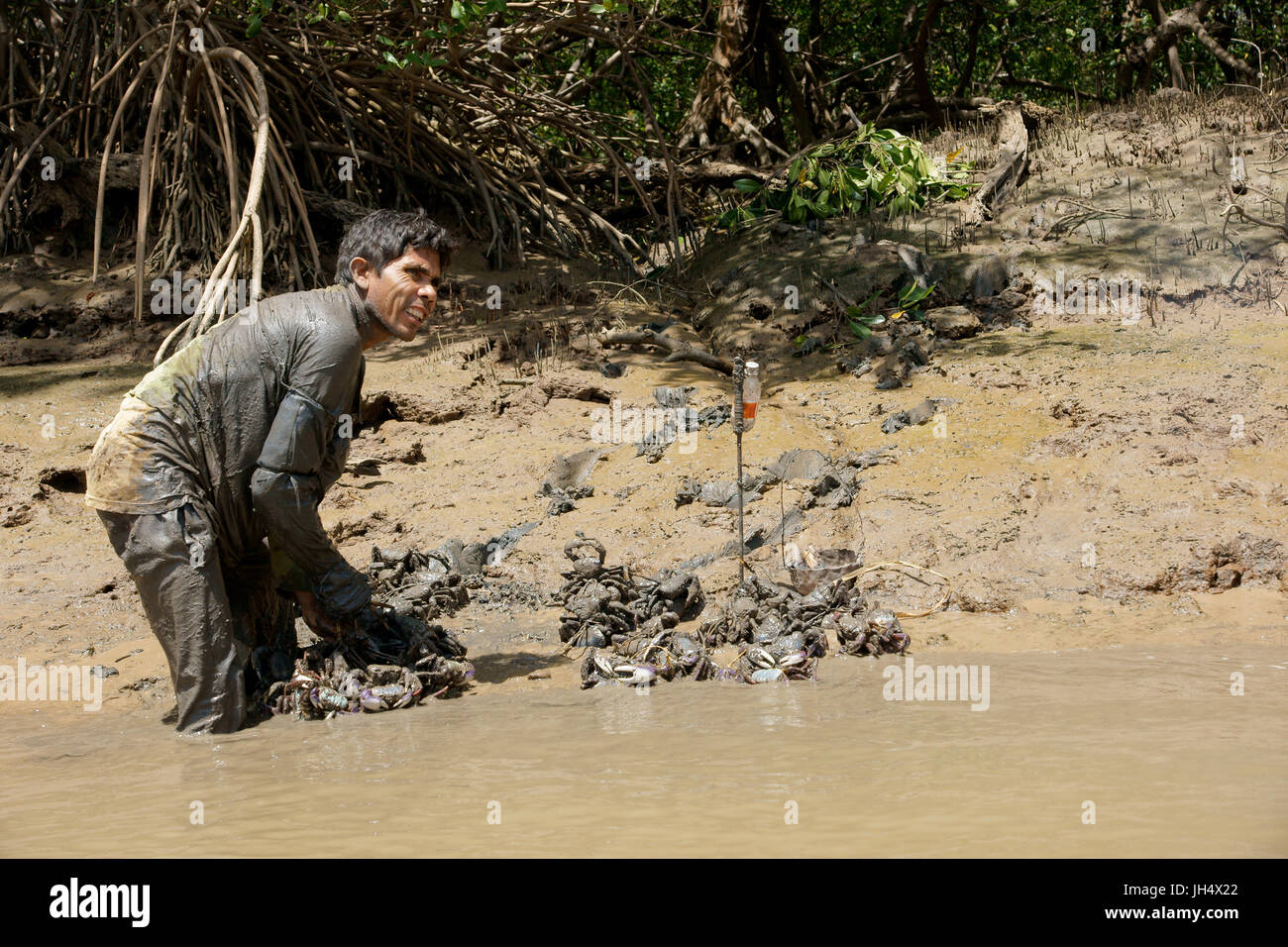 People, man, swamp, City, Parnaíba, Piauí, Brazil - Stock Image