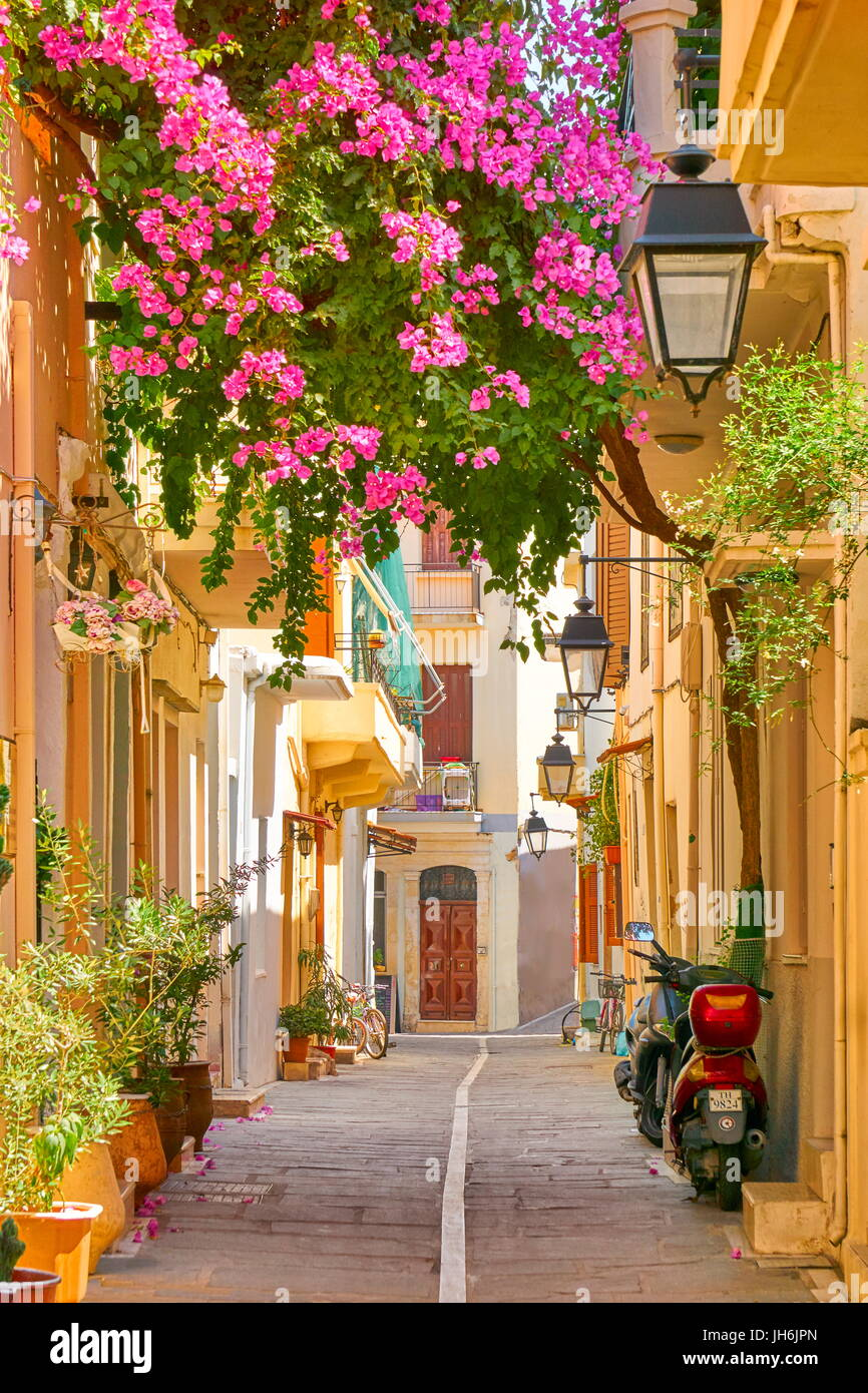 Blooming flowers decoration. Rethymno old town, Crete Island, Greece - Stock Image