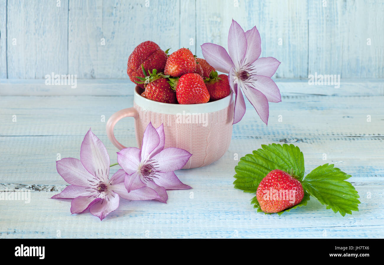Ripe strawberry in a Cup pink ceramic . Pink flowers of clematis. A light blue background. The horizontal frame. - Stock Image