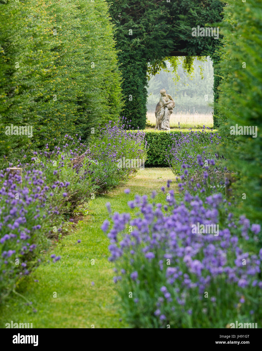 Sculpture of woman in garden with lavender - Stock Image