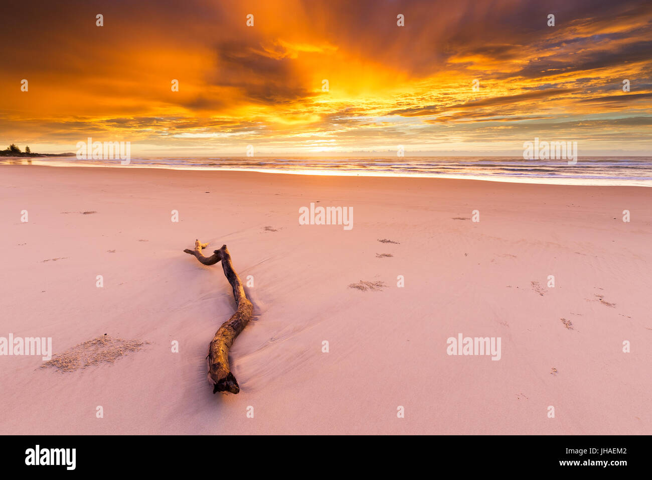 A driftwood log lies on the beach under an amazingly beautiful and intense golden sunrise in Australia. - Stock Image