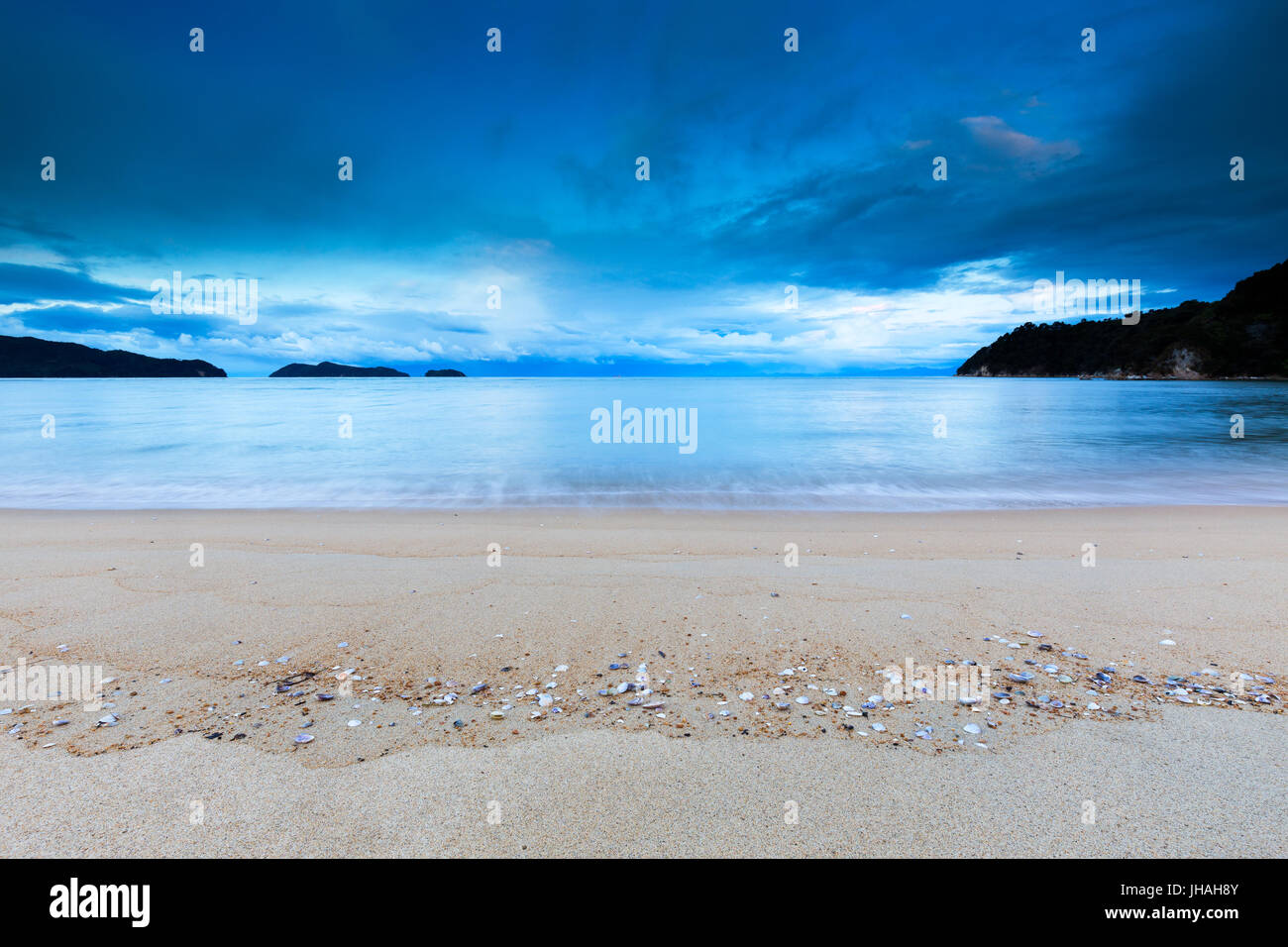 Shells washed ashore on a beautiful cold, blue beach in New Zealand. - Stock Image
