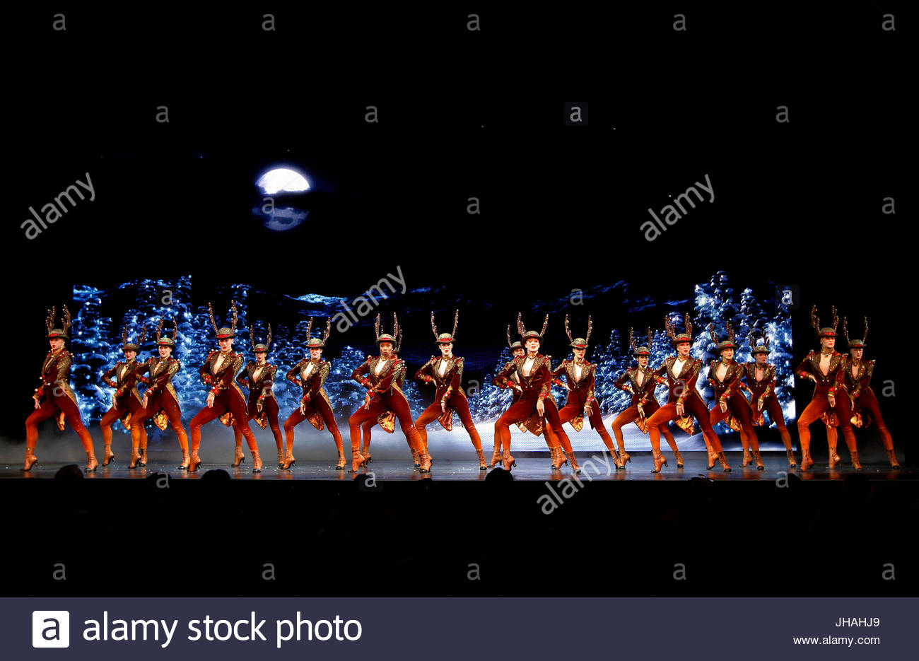 Rockettes. The Radio City Christmas Spectacular starring The Stock ...