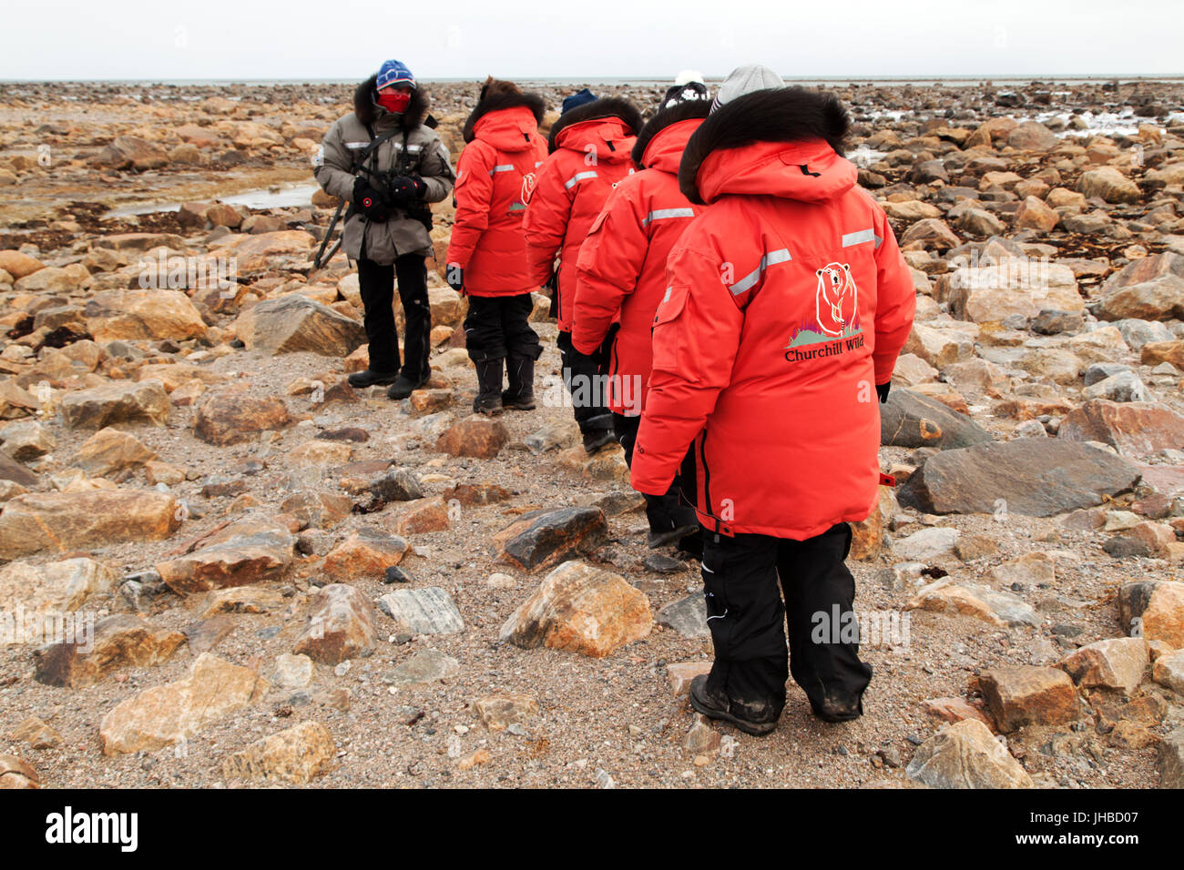 A guide leads a group near Seal River Heritage Lodge in Manitoba, Canada. Guests are guided on foot on the tundra - Stock Image