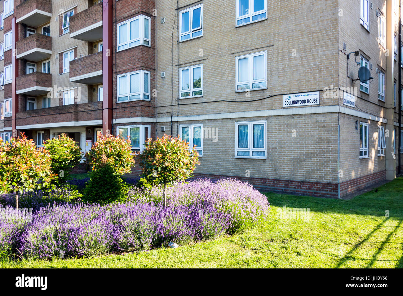 Collingwood House, Darling Row, Bethnal Green, Tower Hamlets, East London, UK - Stock Image