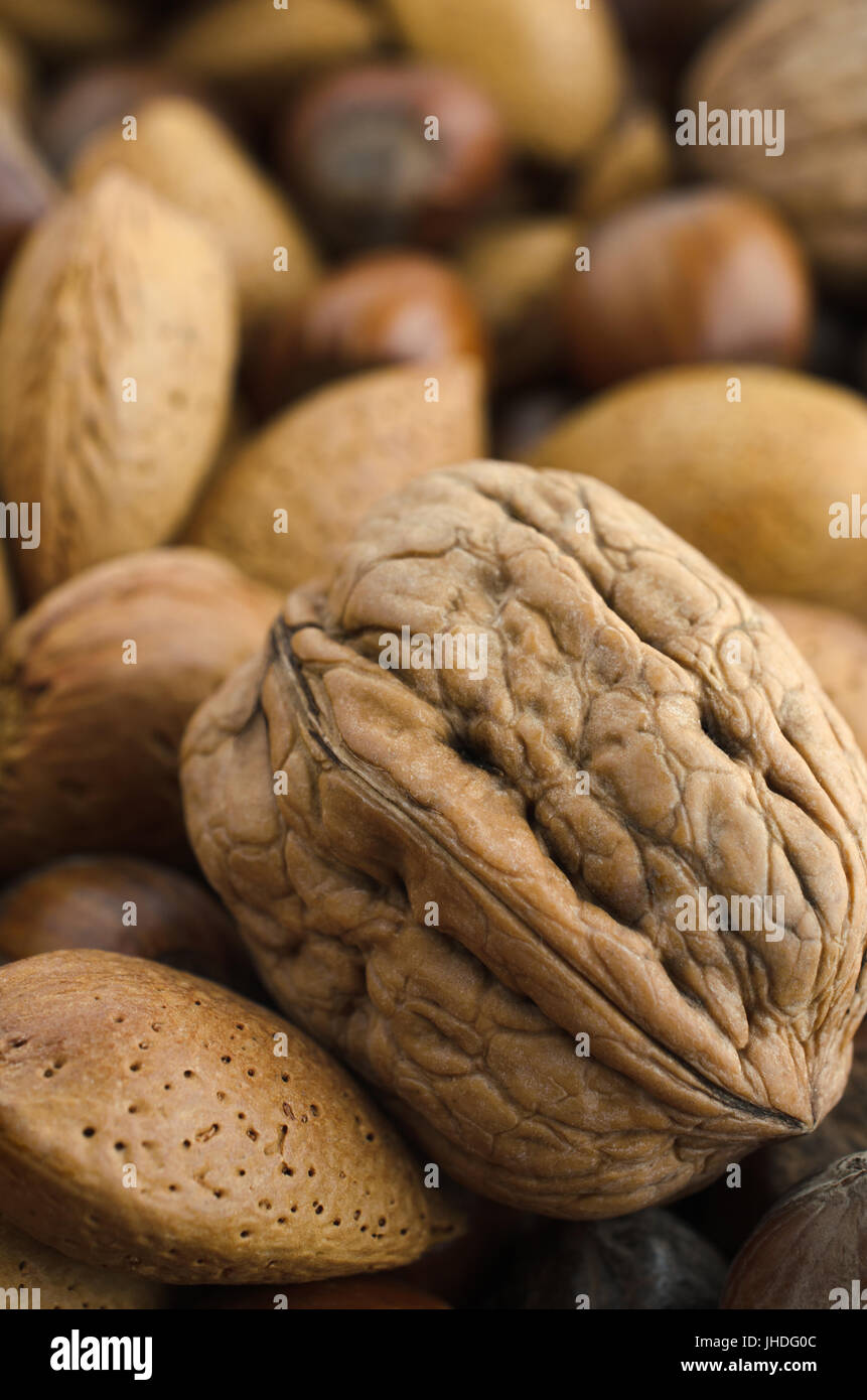 Mixed selection of nuts in shells, includes almonds, chestnuts and a large walnut in foreground. - Stock Image