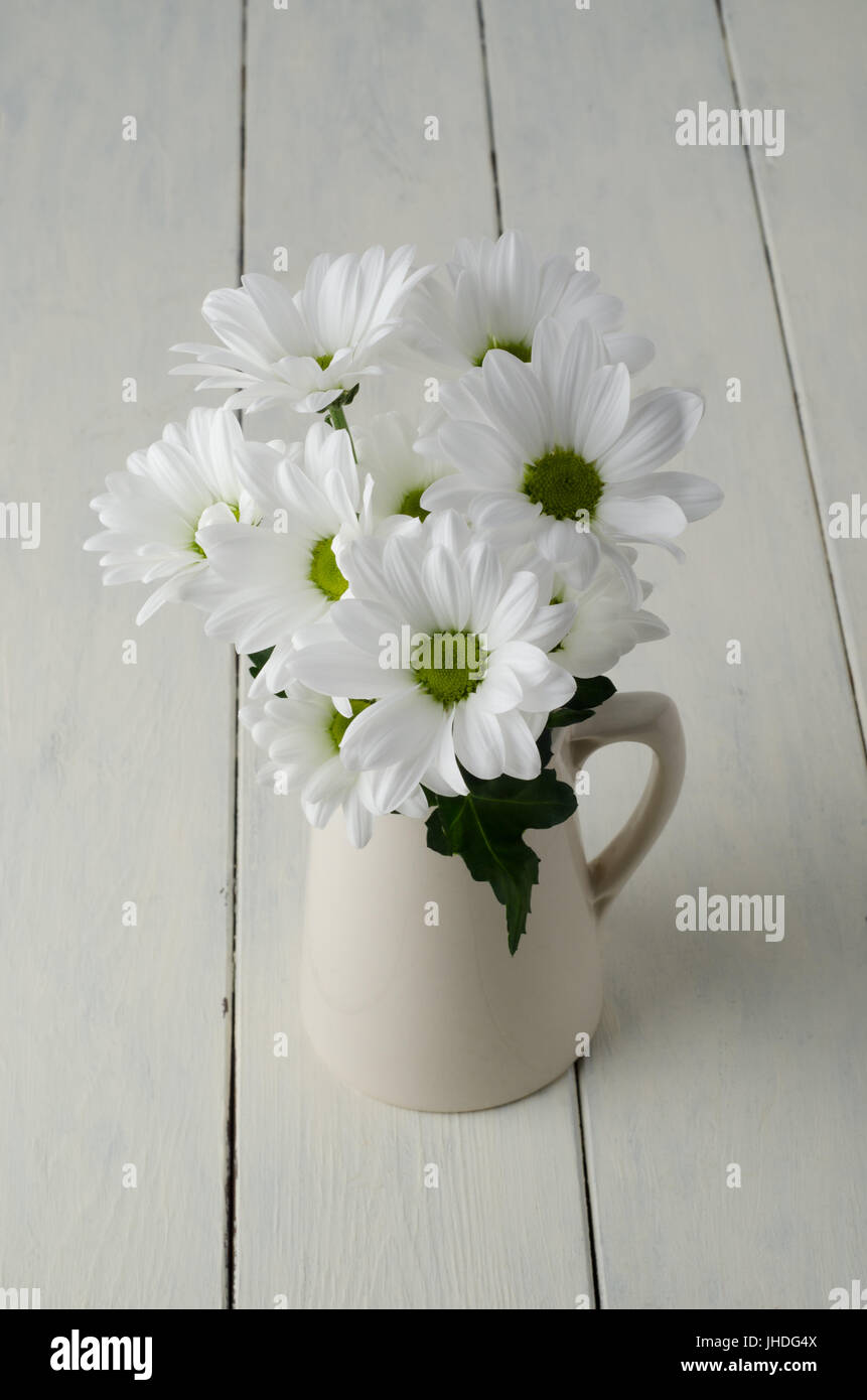 A small bunch of white flowers (Chrysanthemums) with green leaf in a beige jug on creamy off-white painted wood - Stock Image